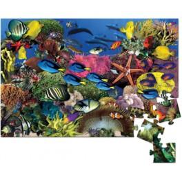 Tropical Fish Tumble Puzzle