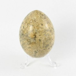 75mm Oceanic Marble Polished Gemstone Carved Egg