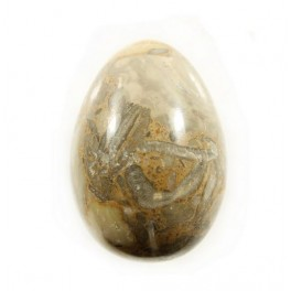 50mm Oceanic Marble Polished Gemstone Carved Egg