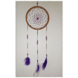 Purple Shades Dream Catcher 5""